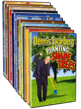 Twelve Days of Swan - DVDs